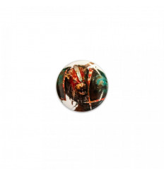Legendary Coin - Drow - COPPER