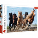 Puzzle 1000pz - Galloping Horses (10446)
