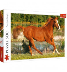 Puzzle 500pz - The Beauty of Gallop (37184)