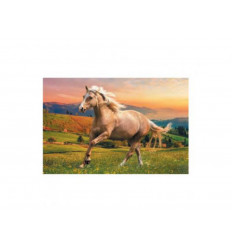Puzzle 500pz - Afternoon Gallop in the Sun (37396)