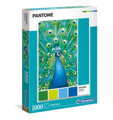 Dragon Shield Art Sleeves - Classic The Astronomer (100 pz.) (AT-12014)