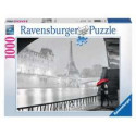 Dragon Shield Art Sleeves - Classic Whistler's Mother (AT-12017)