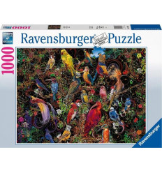 Dungeons & Dragons - 5a Edizione - Guildmasters' Guide to Ravnica - Maps and Miscellany (LINGUA INGLESE)