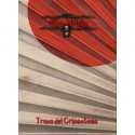 Set 10 d10 Frosted - Blue w/white CHX 27206